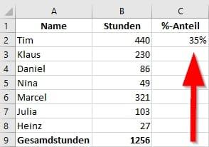 Prozentualer-Anteil-Formatiert